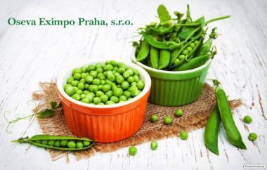 Пропонуємо високоякісне насіння чеської селекції сортів гороху!