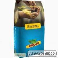 Семена озимого рапса Monsanto гибрид Эксель