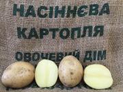 Насіннєву картоплю IPM Potato