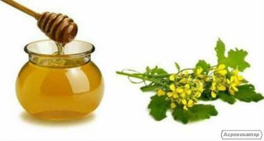 Ріпаковий мед, Гірчичний мед Гречаний мед, Чистий мед.....
