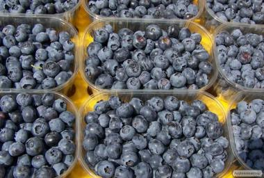Оптова продаж ягоди лохини лохини. Свіжа ягода чорниці, лохіна