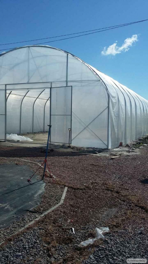 Пленочные теплицы туннельного типа для фермерских хозяйств