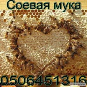 Соєве борошно ( протеїн ) для підгодівлі бджіл