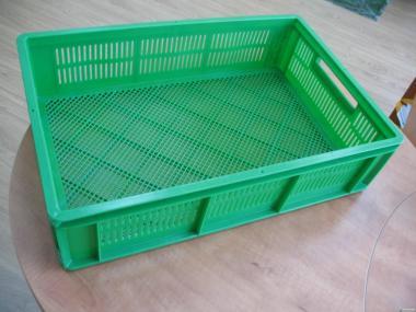 Ящик для суточных цыплят