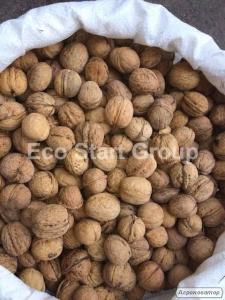 Продаём грецкий орех, кругляк, калиброванный. Возможен экспорт