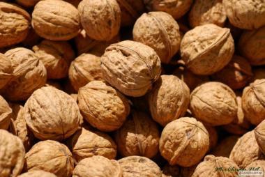 Постійно продаємо волоський горіх, урожай 2017 р. Експортний варіант 28+