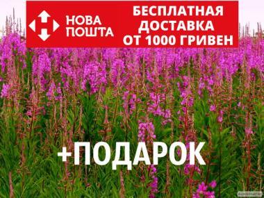 Иван-чай семена 20 шт (кипрей узколистный копорский) насіння