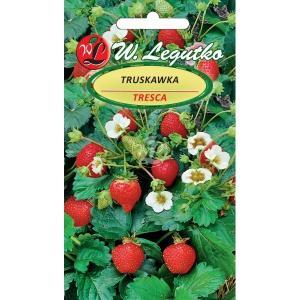 Семена ягод