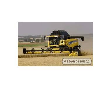 Прибирання зернових,соняшнику(по Україні)