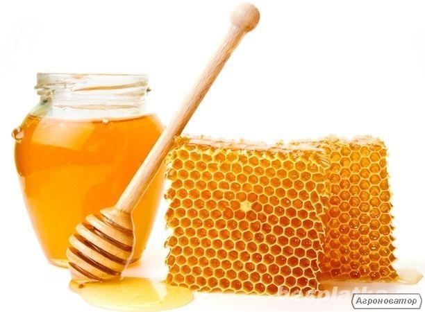 Продам мед со своей пасеки