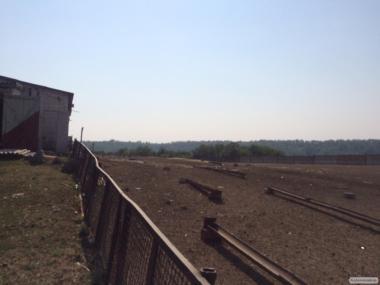 Аренда фермы + пастбища