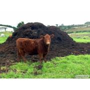 Компост в мешках купить перегной коровий