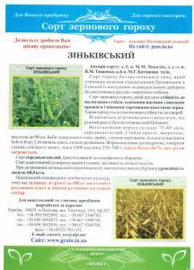 ГОРОХ Сорт «Зиньковский»