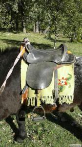 Продается пони