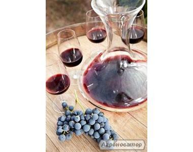 Предлагаю Закарпатское столовое домашнее вино сорта Баня Изабелла