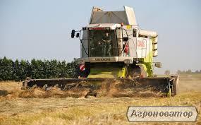 Предоставляю услуги по уборке сельскохозяйственных культур 2021