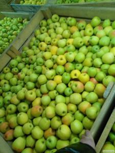 Підприємство виробник продає яблука зі свого саду