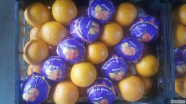Продам овощи фрукты (Турция , Испания)