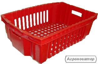 ящик пластиковий для овочів і фруктів
