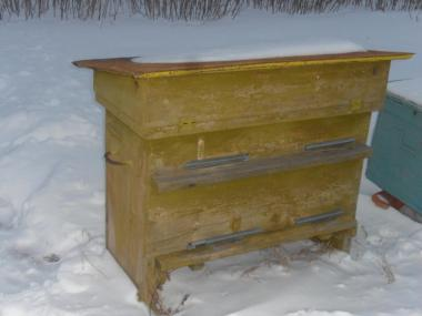 Ульи с пчелами.