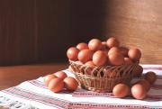Куряче яйце від виробника