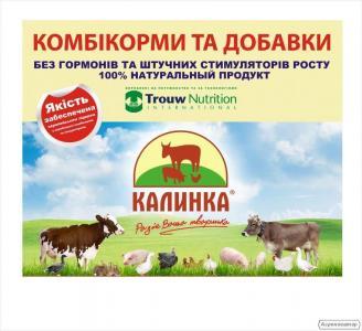 БМВД Калинка Хендрикс