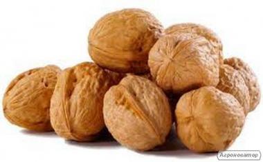 куплю орех грецкий,(волошский), ядро ореха.