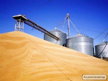 Элеватор, Зернохранилище, Крупоцех 100% Аграрный Бизнес