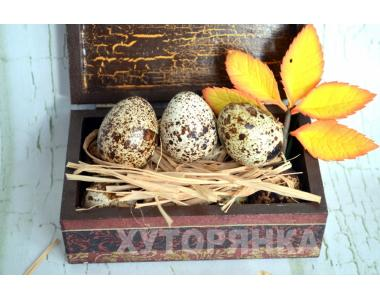 Перепелиные пищевые яйца Днепропетровск доставка