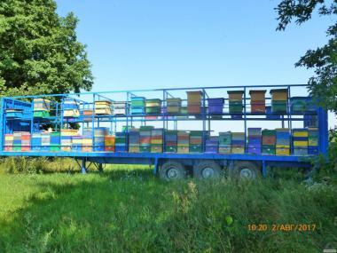 Причіп Для перевезення бджіл