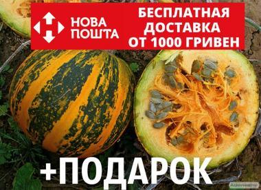 Тыква голосеменная семена 20 грамм (около 100 шт) насіння гарбуза
