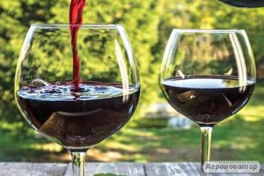 Вино домашнього приготування