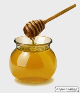 Купуємо мед ОПТОМ 31 ГРН