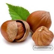 Сухофрукти, горіхи цукати оптом і дрібним оптом