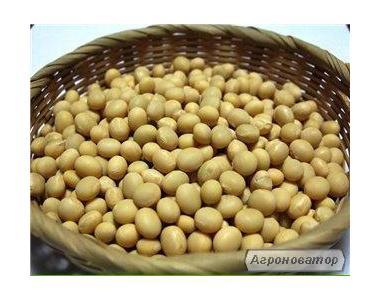Продам насіння сої Діона, 1 репродукція!