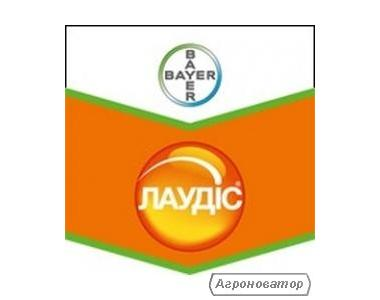 Гербіцид Лаудис (Bayer Crop Science)