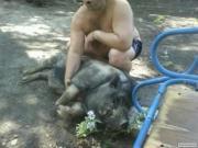 Вьетнамский хряк производитель и свиноматка