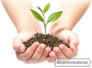 Засоби захисту рослин: гербіциди, фунгіциди, інсектициди, десиканти