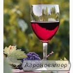 Домашнее вино.