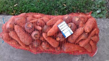 Продам моркву Забарвлення 200 т. Дешево