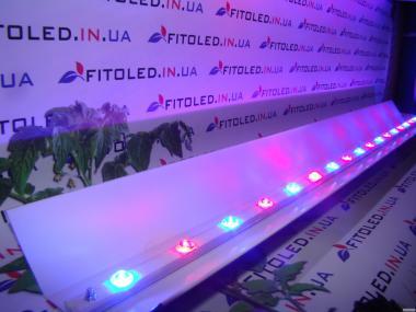 LED-освещение для теплиц