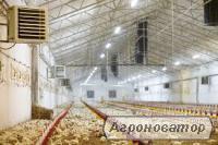 Система вентиляції для птахофабрик, б/в система вентиляції для пташник