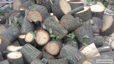 Покупайте дрова брикеты из торфа для каминов Киверцы
