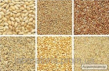 Лаболаторний Аналіз зернових, олійних культур