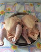 Продам домашні кури (тушки) бройлери, Майстер Грей, Ред Бро