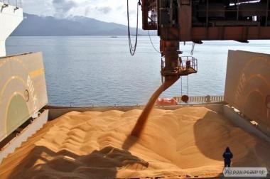 Пшеницы 3 класса на условиях FOB Черное море
