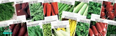 Пакетированные семена оптом