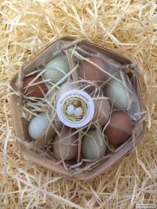 Яйца куриные, цветные, упаковка 10 шт.