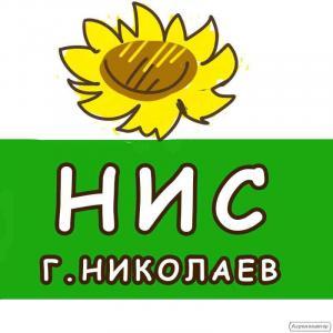 Продаємо насіння соняшнику
