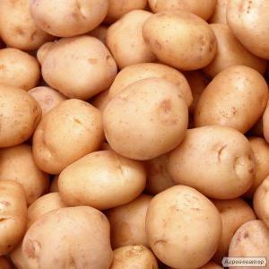Продам картофель второго сорта
